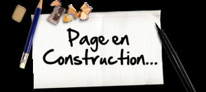 page-en-construction5b15d-604x270